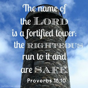 Proverbs 18:10 Photo with Words